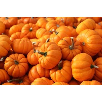 Fresh Bulk Raw Pumpkin Seeds (100g)