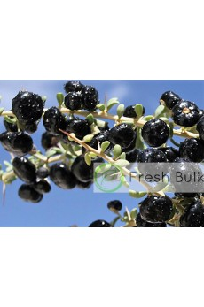 Black Goji Berry Black Wolfberry (100g)